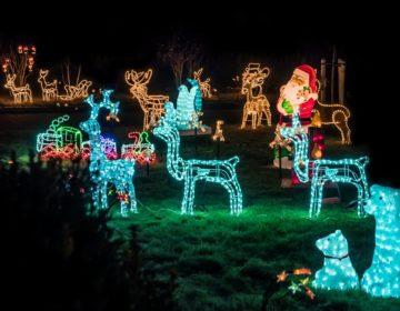 De mooiste kersttuin van de straat